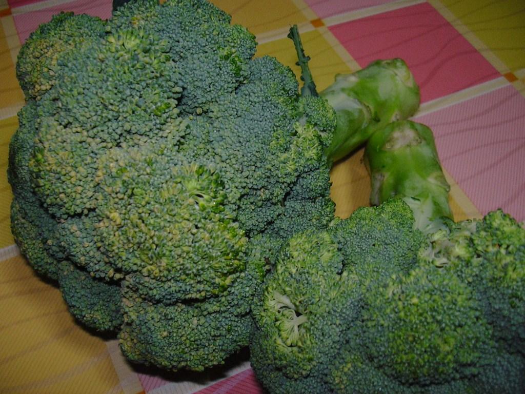 Ricette con broccoli for Cucinare broccoli
