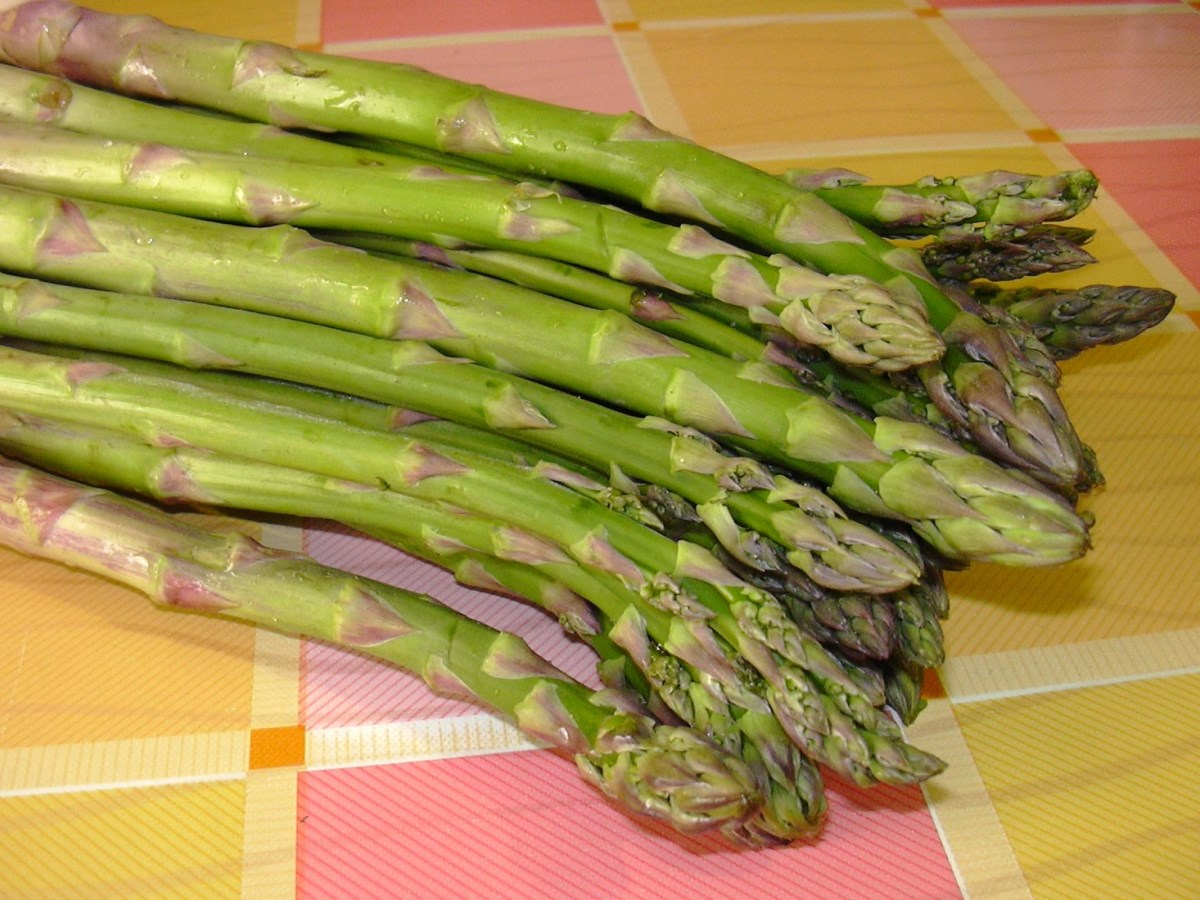 Crepes agli asparagi