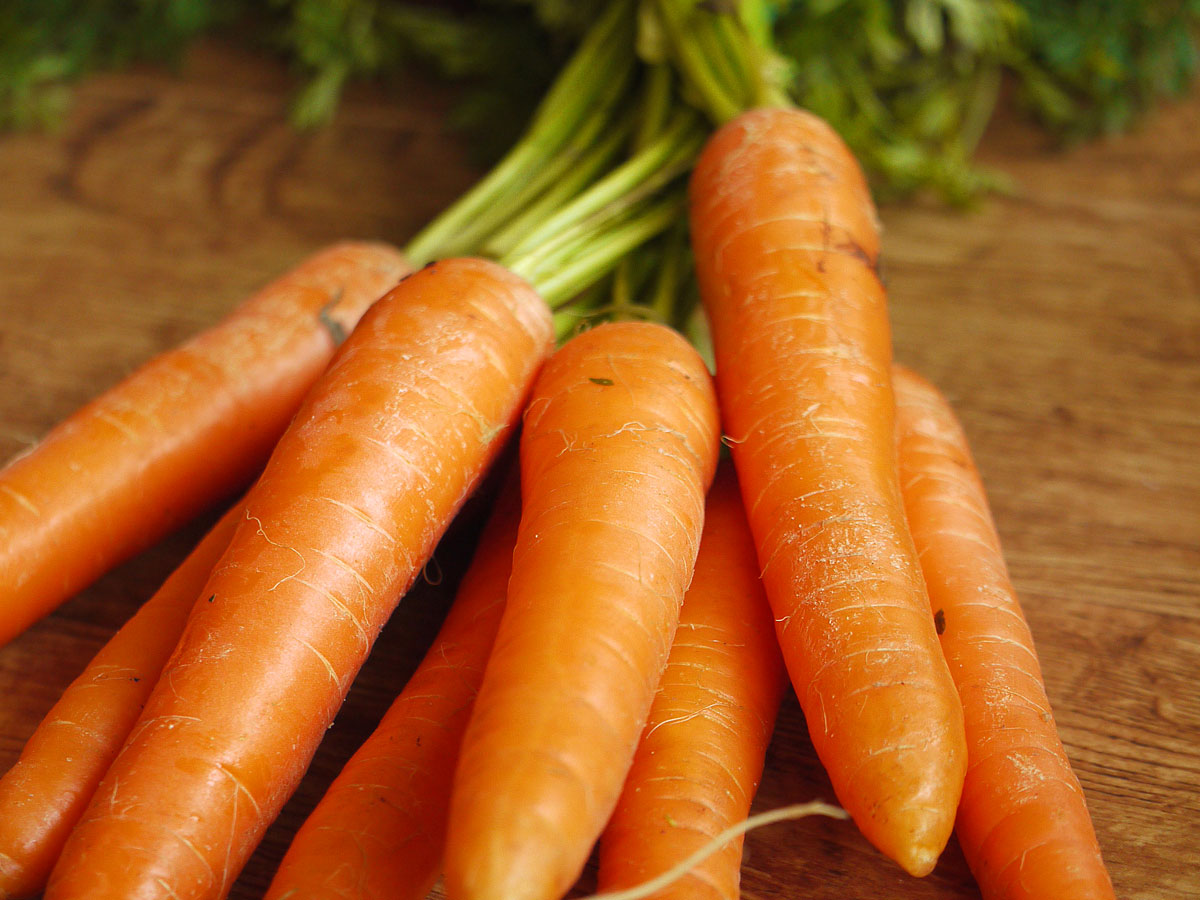 Piccoli flan di carote