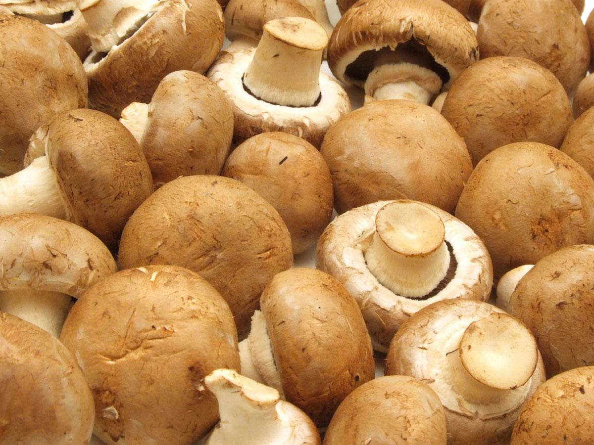 Insalata brasiliana con champignon
