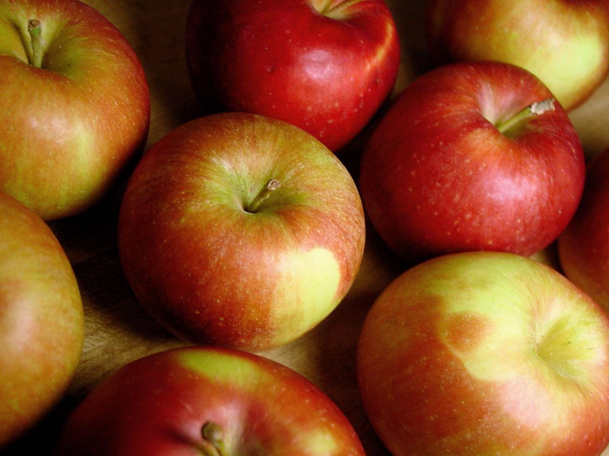 Lonza di maiale alle mele