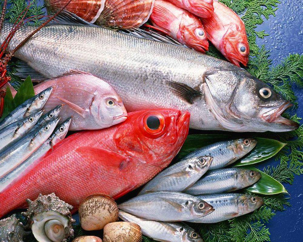 Come riconoscere il pesce fresco - Pesci comuni in tavola ...