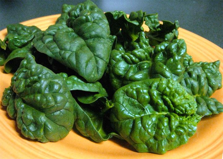Spinaci propriet nutrizionali e benefici per la salute for Cucinare spinaci
