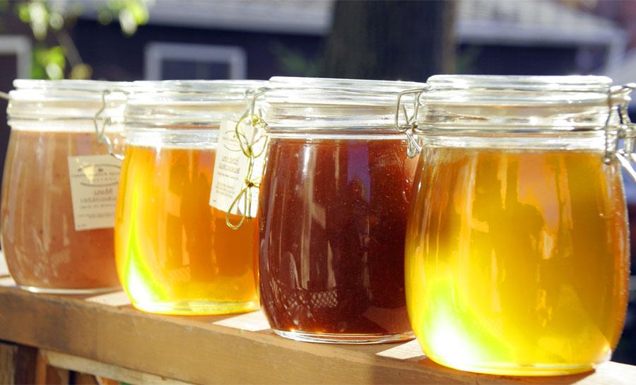 Miele e salute: le proprietà benefiche di ogni tipo di miele