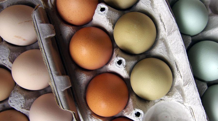 3 consigli per scegliere le uova al supermercato