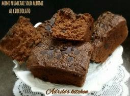Plumcake al cioccolato di soli albumi